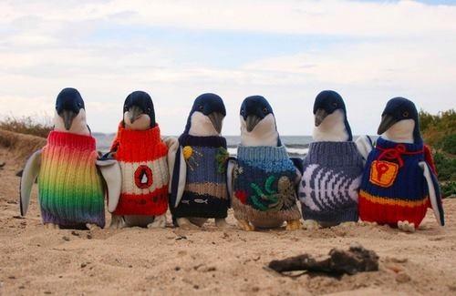 pingouin 2778e81