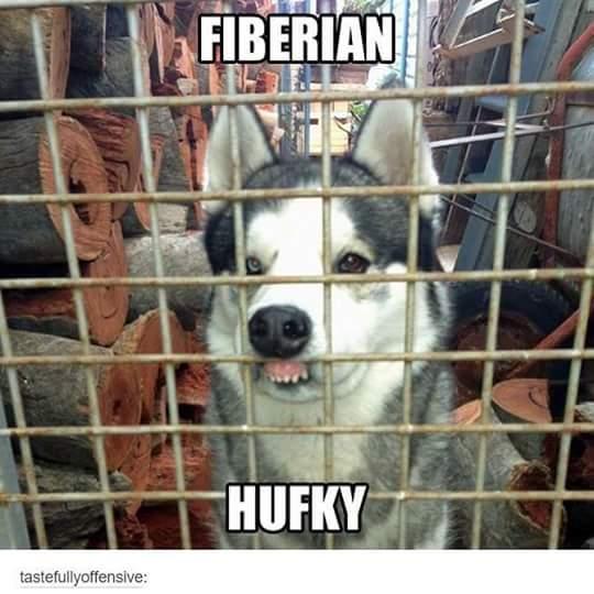 fiberianhfky