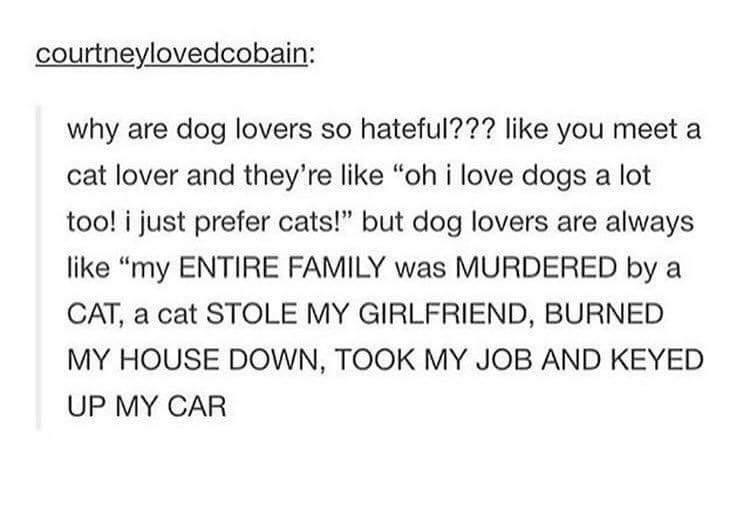 2.J'aime pas les chats