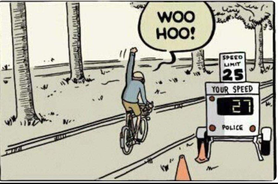 6.je suis montée en vélo vivante